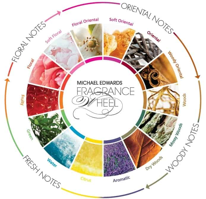 Fragrance Families Explained Easily and Simply