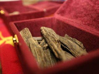best-oud-fragrances-for-men-and-women