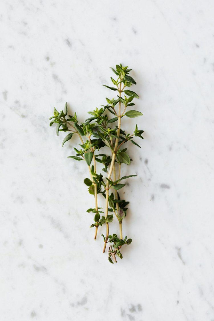 herbs polo black